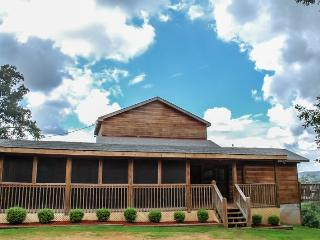 GOOSE ISLAND GETAWAY- 3BR/2.5BA- SUPER SECLUDED CABIN SLEEPS 7, AWESOME MOUNTAIN VIEW, GAS LOG FIREPLACE, HOT TUB, SCREENED PORCH! STARTING AT $120 A NIGHT! - Blue Ridge vacation rentals