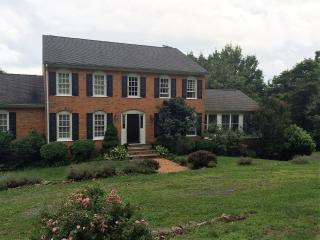 Wine Country Retreat 60 miles from DC - Markham vacation rentals