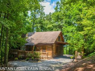 Bear Ridge (formerly known as Turkey Trot)-4bedroom/3 bathroom, Sleeps 12, Game Room with Pool Table, Gas Log Fireplace, Large Deck with Hot Tub and Gas Fire Pit, and Screened in Porch, starting at $195/night! - Blue Ridge vacation rentals