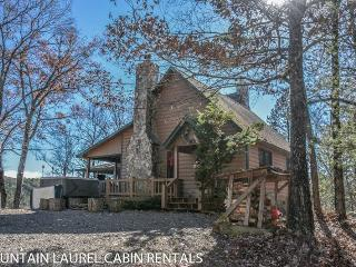 Comfortable House with Wireless Internet and Parking - Blue Ridge vacation rentals