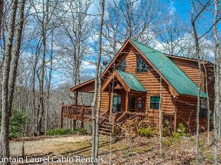 Cozy 2 bedroom House in Blue Ridge - Blue Ridge vacation rentals