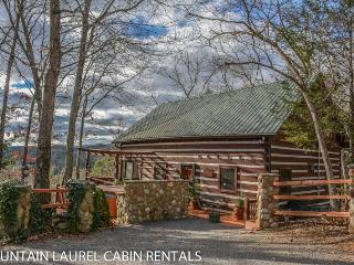 Charming 2 bedroom House in Blue Ridge - Blue Ridge vacation rentals
