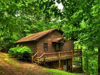 Bright 3 bedroom House in Blue Ridge - Blue Ridge vacation rentals