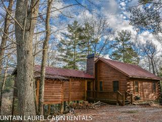 2 bedroom House with Television in Blue Ridge - Blue Ridge vacation rentals
