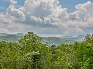 OKEANA OF THE LAST RESORT- 1BR/1BA CABIN WITH BEAUTIFUL MOUNTAIN VIEW, INDOOR SUNKEN HOT TUB, SUN ROOM, HUGE PORCH WITH CHIMNEA AND GAS GRILL, CHESS AND CHECKER BOARD TABLE, DARTS, SLEEPS 2, STARTING AT $99 A NIGHT! - Blue Ridge vacation rentals