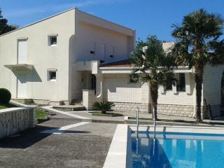 Perfect House with Internet Access and A/C - Stari Bar vacation rentals
