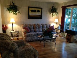 beautiful 3 bedroom vacation home - Saint John's vacation rentals