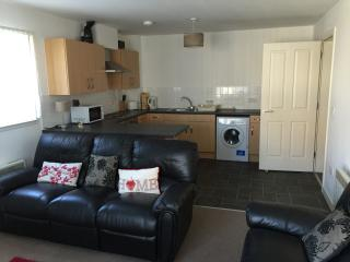 Superb apartment in Dundee centre, private parking, Virgin TV, free broadband - Dundee vacation rentals