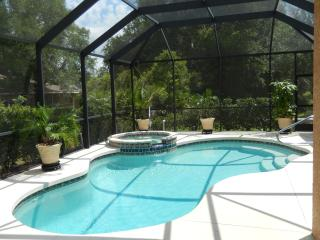 Beautiful Spacious 3BR+Den Pool & spa - North Port vacation rentals