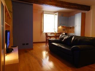 Bright open space studio in Bologna - Bologna vacation rentals