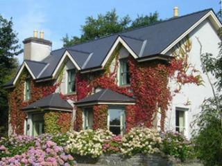 5 bedroom Lodge with Internet Access in Cashel - Cashel vacation rentals
