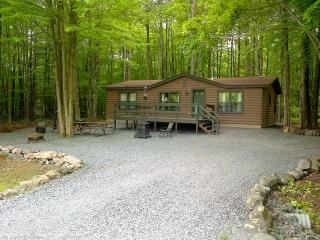 Arrowhead Lake/Pocono Lake Log Cabin!!!! - Pocono Lake vacation rentals