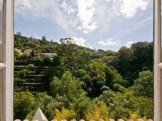 SUPERB VIEWS! ROMANTIC CHALET IN SINTRA CENTRE - Sintra vacation rentals