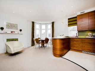 State-of-the-art & Stylish apartment- Central London - London vacation rentals