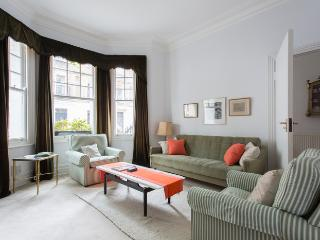 Smart one bedroom apartment in a super location - Chelsea - London vacation rentals