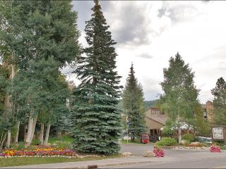 Heated Pool & Hot Tubs, 2 Tennis Courts - Free Year Round City Bus Service (2942) - Steamboat Springs vacation rentals