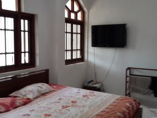 Bright 3 bedroom Kandy Apartment with Internet Access - Kandy vacation rentals