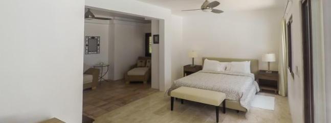 Villa Zebra - Image 1 - Barcelos - rentals