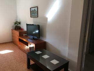 Nice Condo with Television and Microwave - Soto de Cangas vacation rentals