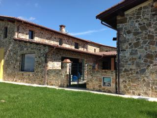 Renovated Barn with Infinity Swimming Pool - Montalcino vacation rentals
