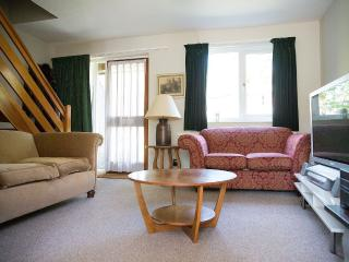 Amazing 2 Bedroom central Oxford house - Oxford vacation rentals