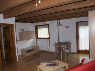 Masi House, comfortable and cosy - Vodo Cadore vacation rentals