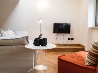 Elegant loft apartment - Turin vacation rentals