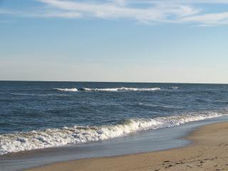 209 - Pet friendly, Ocean-front, Stunning views - Carolina Beach vacation rentals