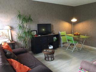 appartement idéal pour tourisme et detente - Blanquefort vacation rentals