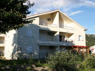 BRAJKOVIC(2453-6182) - Draga Bascanska vacation rentals