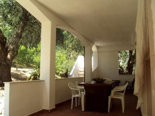 Gargano - Villetta autonoma-immersa tra gli ulivi - San Menaio vacation rentals