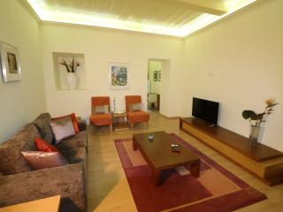 Spacious, great location with garden terrace - Coimbra vacation rentals