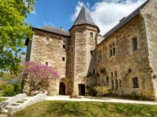 Holiday Château in the Garden of France - Faye-d'Anjou vacation rentals
