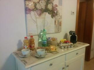 Cozy 2 bedroom Bed and Breakfast in Piazzola sul Brenta - Piazzola sul Brenta vacation rentals