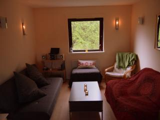 1 bedroom Private room with Washing Machine in Edinburgh - Edinburgh vacation rentals