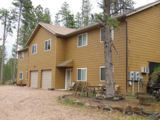 Condo B  2 BR 1 BA - Hill City vacation rentals