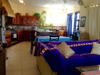 Villa Paloma -Spacious two bedroom ocean view home - La Manzanilla vacation rentals