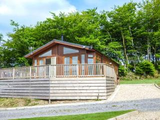 LODGE 11, all ground floor, open plan living area, pet-friendly, nr Tavistock, Ref 938377 - Tavistock vacation rentals