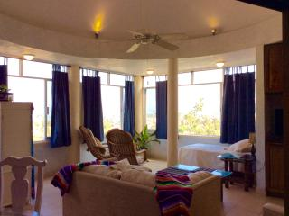 Upper suite at Villa Paloma:ocean view penthouse . - La Manzanilla vacation rentals