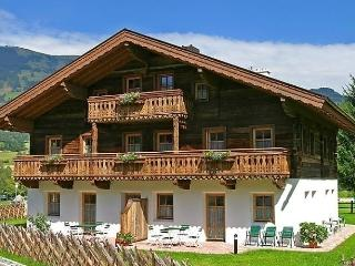 Nice Condo with Internet Access and Dishwasher - Hollersbach im Pinzgau vacation rentals