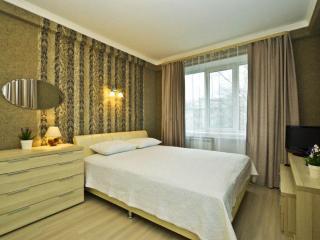 Apartment in Saint-Petersburg #2976 - Saint Petersburg vacation rentals