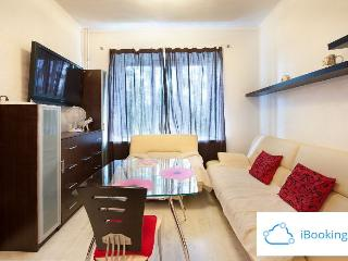 Cozy 1 bedroom Apartment in Moscow - Moscow vacation rentals