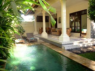 Villa Sofia - Perfect for 2 couples or a family - Ubud vacation rentals