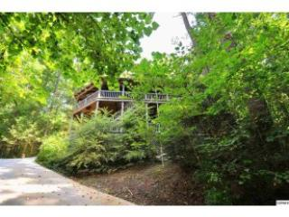 """Tree House"": Nestled in woods, Private, Spacious - Townsend vacation rentals"