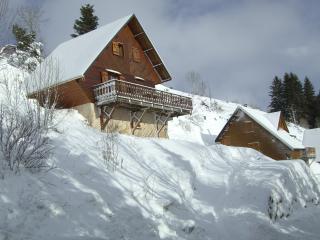 Bright 4 bedroom Chalet in Besse-et-Saint-Anastaise - Besse-et-Saint-Anastaise vacation rentals
