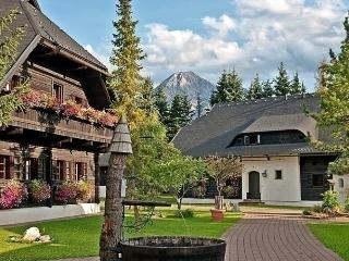 Comfortable Condo with Dishwasher and Short Breaks Allowed - Saint Stefan im Gailtal vacation rentals