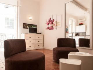 Studio full center 2 steps Palais and beaches HV6 - Cannes vacation rentals