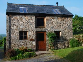 Romantic 1 bedroom Widecombe in the Moor Cottage with Internet Access - Widecombe in the Moor vacation rentals