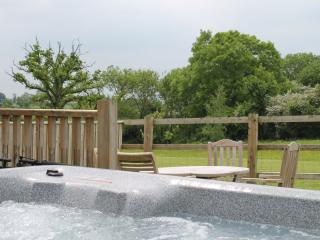 Lower Withial Farm - Bradley Barn with Hot tub - East Pennard vacation rentals