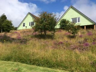 Comfortable 2 bedroom Chalet in Dervaig with Internet Access - Dervaig vacation rentals